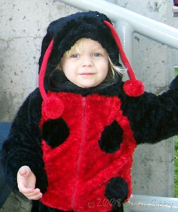 Halloween 2008 - Audrey dressed as a ladybug